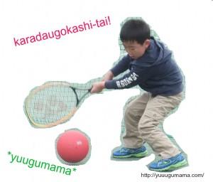 karadaugokashi201320SM42ball
